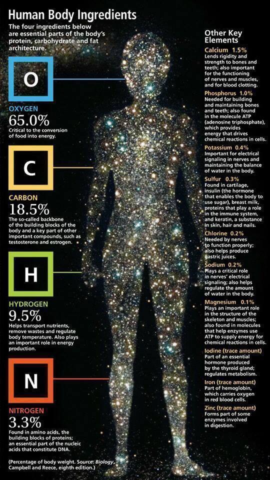 We Are Stardust, Literally